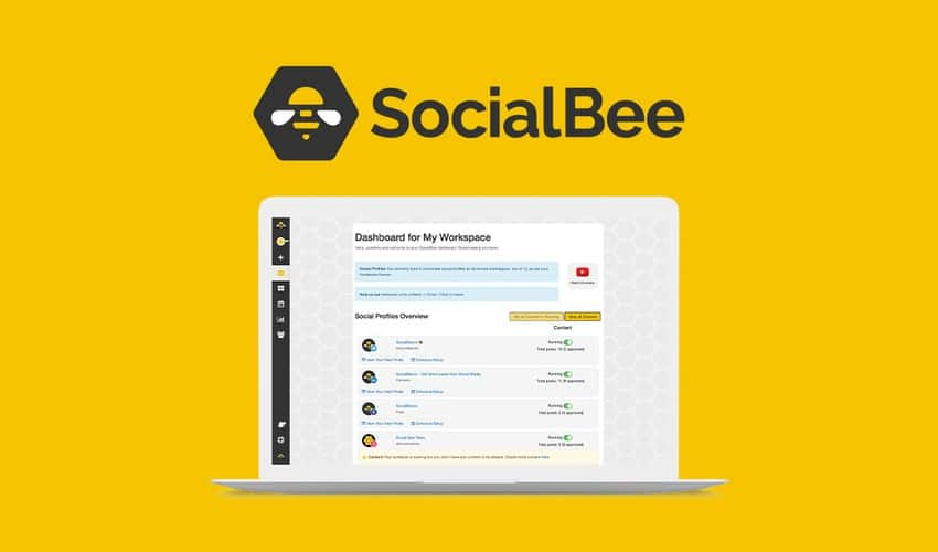 SocialBee.io
